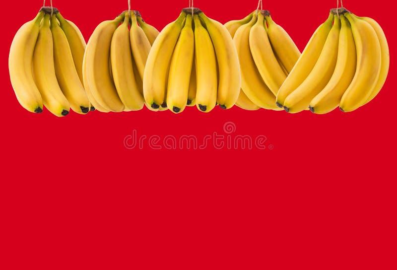 Beaucoup de groupe mûr de banane avec l'espace pour le texte sur un fond rouge Le concept de la nourriture saine images libres de droits