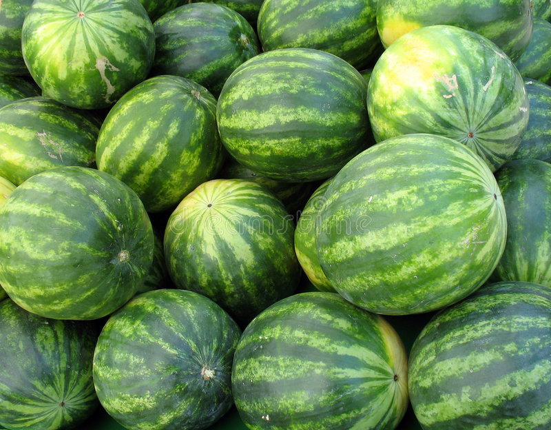 Beaucoup de melons photo libre de droits