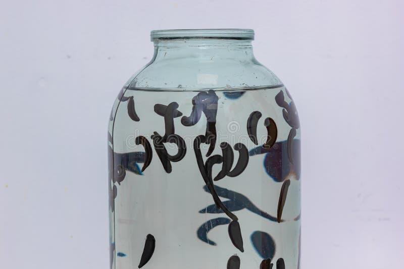 Beaucoup de sangsues dans l'eau coincée dans le pot en verre, plan rapproché image stock