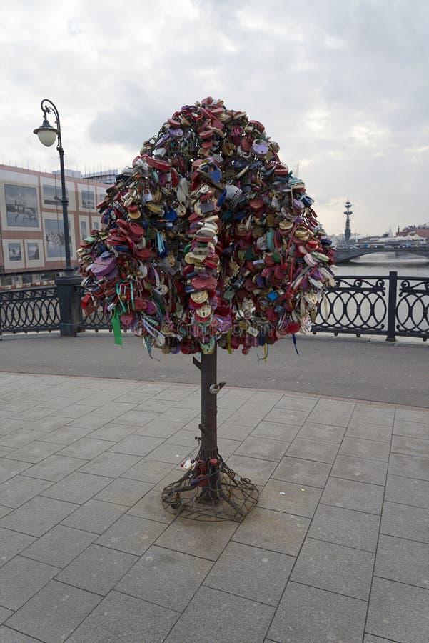 Beaucoup de serrures sur l'arbre photographie stock