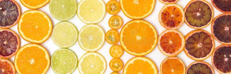 Beaucoup de tranches oranges fraîches, zironen des tranches, tranches de chaux, tranches de kumquat sont bien arrangées sur un fo images libres de droits