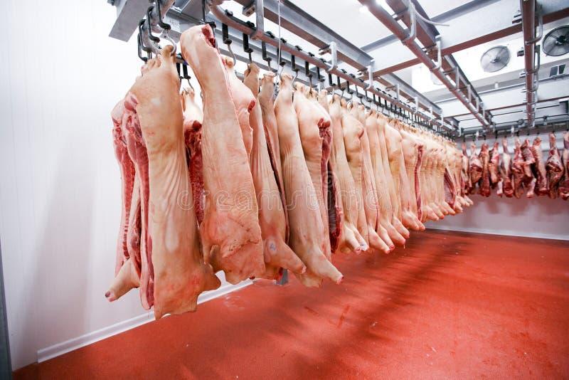 Beaucoup de viande crue fraîche hachée de porc accrochant et arranger et traitant le dépôt dans un réfrigérateur, dans une usine  image libre de droits