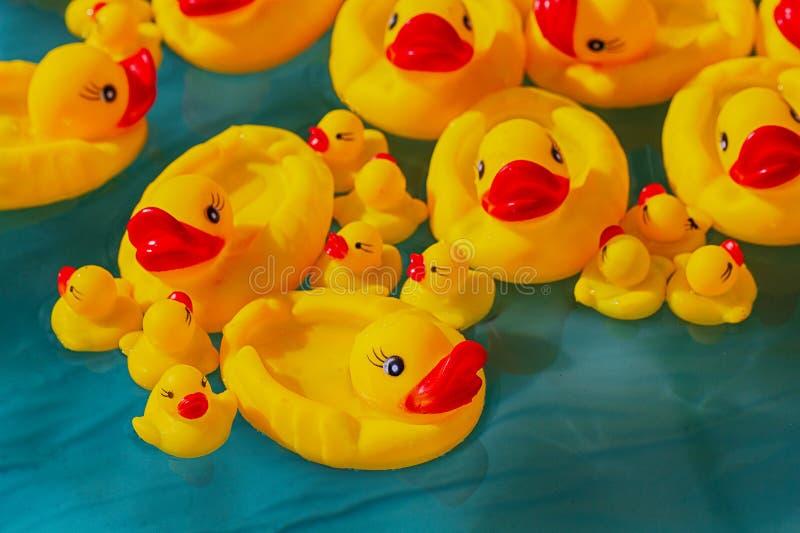 Beaucoup le jouet jaune en caoutchouc penche le flottement chez la piscine du ` s des enfants photographie stock