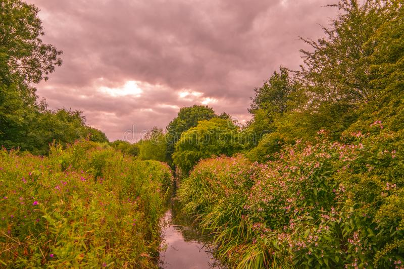 Beauiful park landscape. Beauiful park landscape with cloudy sky royalty free stock photography