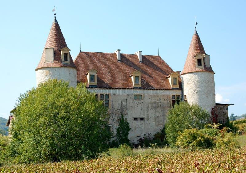 beaujolais ιδιωτική περιοχή της Γα στοκ φωτογραφία με δικαίωμα ελεύθερης χρήσης