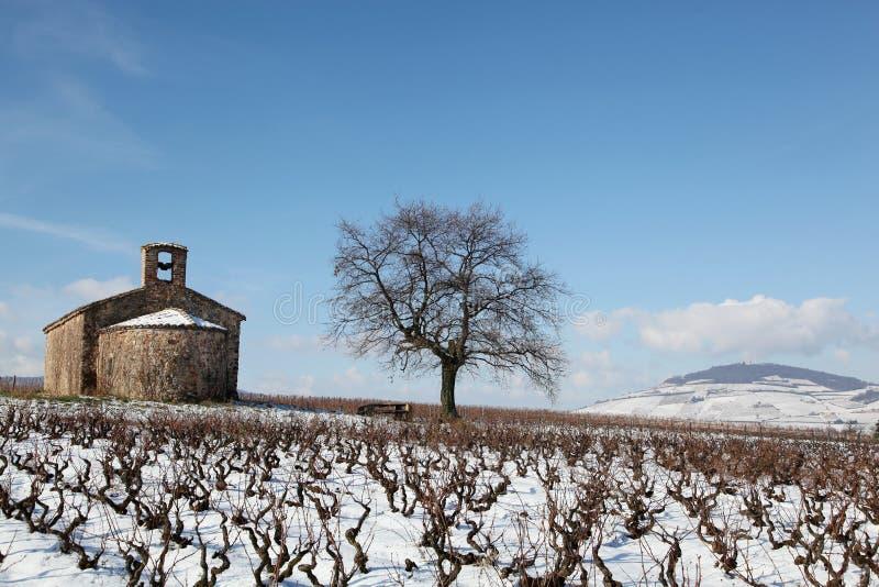 Beaujolais en hiver photos stock