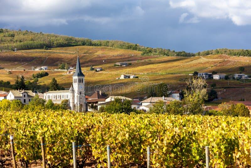 Beaujolais, Rhone-Alpes, Francia imagen de archivo
