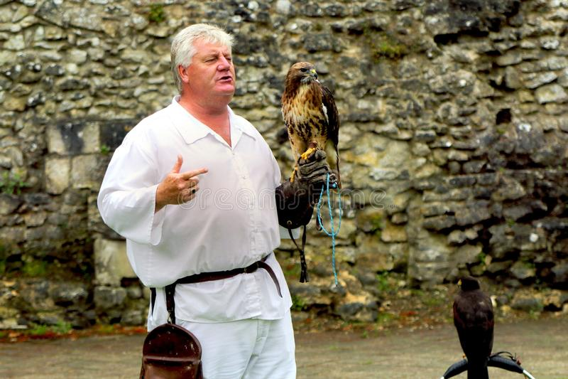 Beaulieu, Hampshire, R-U - 29 mai 2017 : Fauconnier avec sa buse image libre de droits