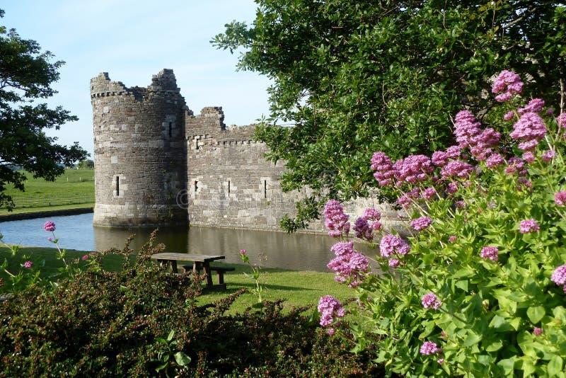 Beaumaris slott, Anglesey, Wales med vallgraven och blommor royaltyfri bild