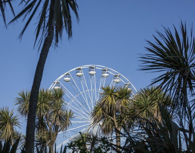 Beaumaris, Walia - Ferris drzewka palmowe i koło zdjęcie royalty free