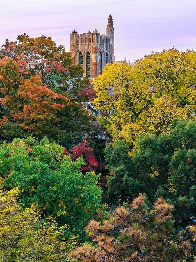 Beaumont wierza, MSU zdjęcie royalty free