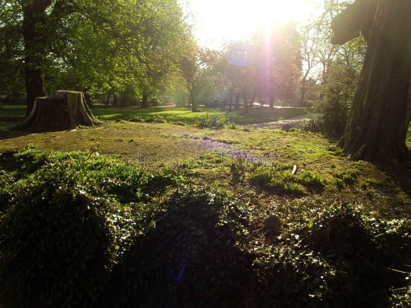 Beaumontpark Plymouth royalty-vrije stock fotografie