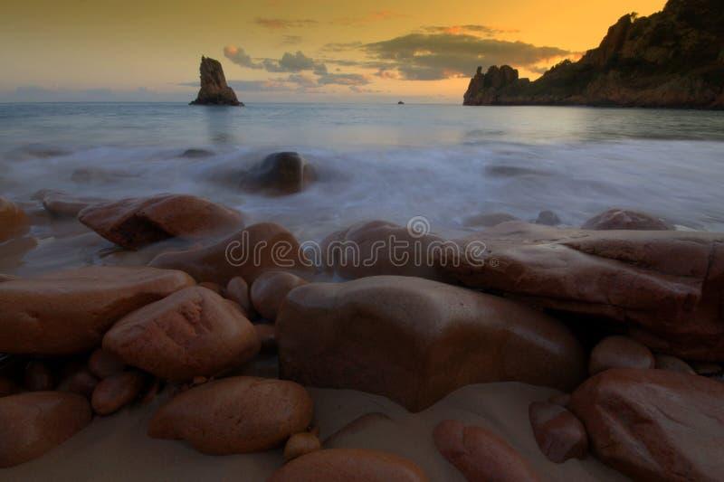 beauport plażowy bydło obrazy stock