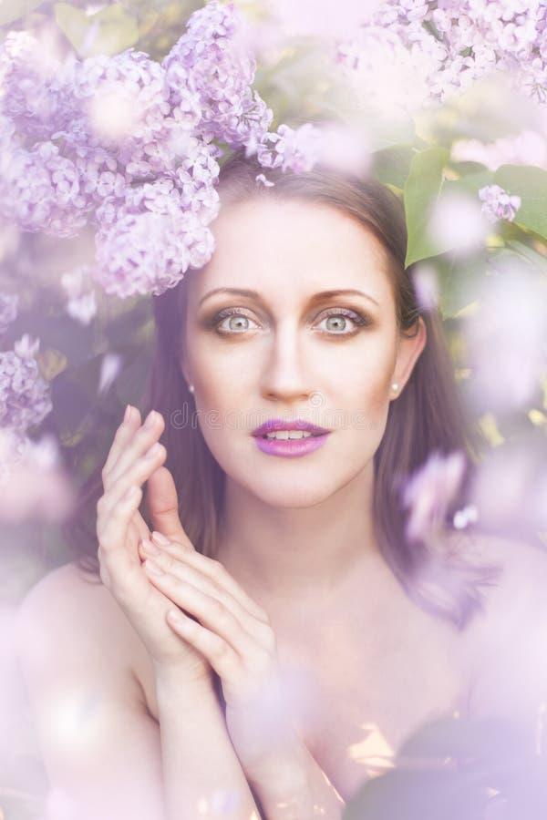 Beauté dans le lilas photographie stock libre de droits