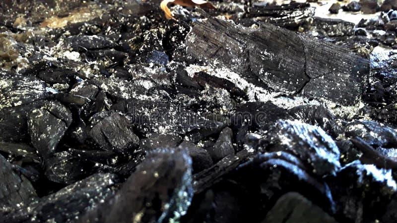 Beauté dans les cendres images stock