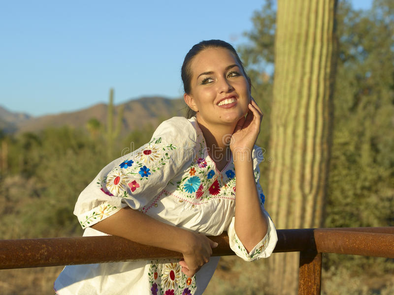 Beauté de Brunette dans le désert photos stock