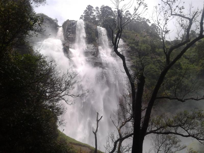 Beaut? de cascade de Bodhumbara de Nuweraeliya Sri Lanka photo stock