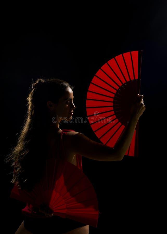 Beauté de flamenco image stock