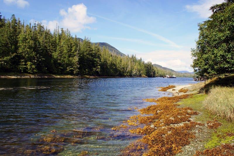 BEAUTÉ DE L'ALASKA photo libre de droits