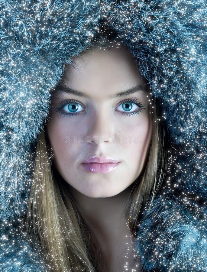 Beauté de l'hiver image libre de droits