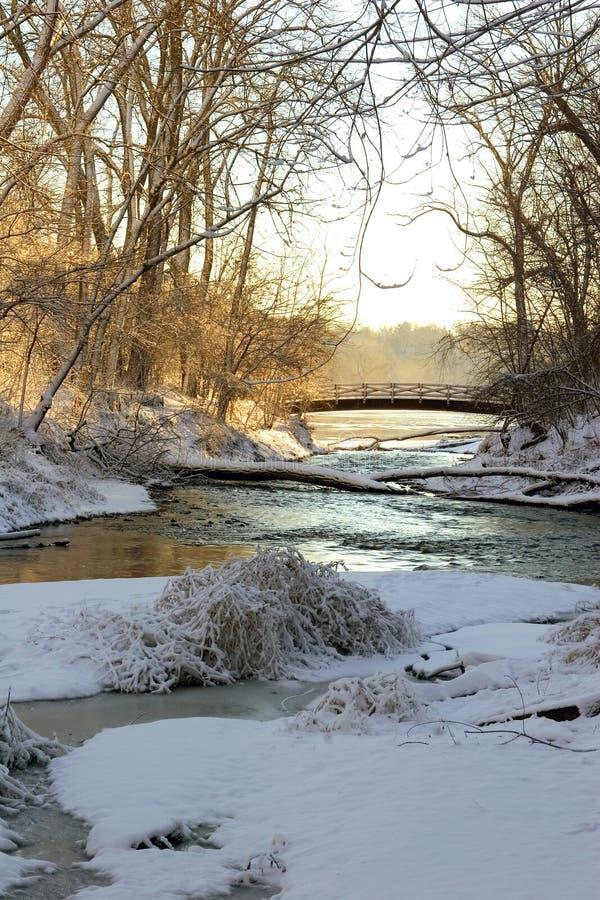Beauté de l'hiver photos stock