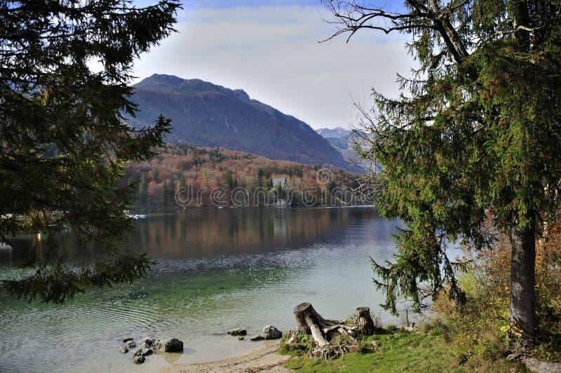 Beauté de lac Bohinj en Slovénie photographie stock libre de droits