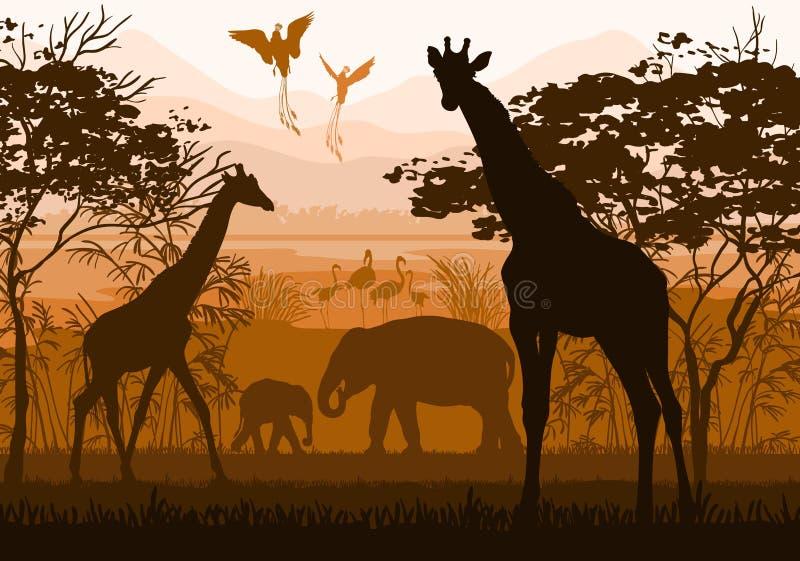 Beauté de nature avec les animaux sauvages (girafe, éléphant, flamant, illustration libre de droits