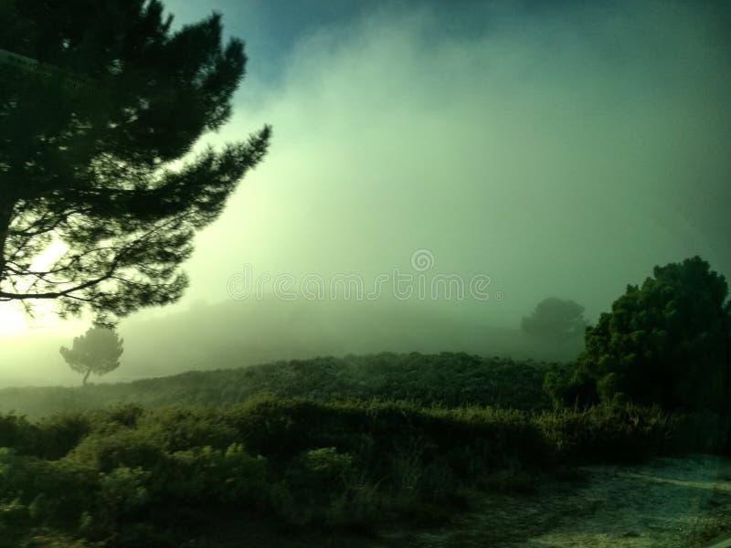 Beauté de nature Sur le chemin vers Séville a vu un brouillard épais image stock