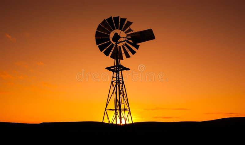 Beauté du vent photo libre de droits