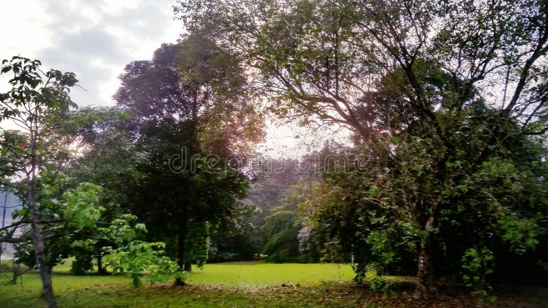 Beauté magique de nature irremplaçable photos stock