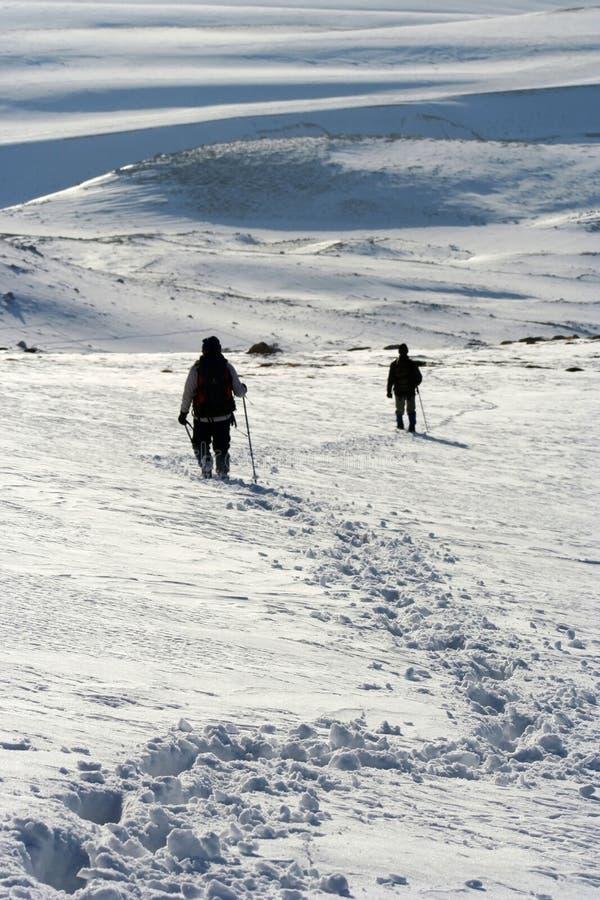 Beauté-neige de l'hiver image stock