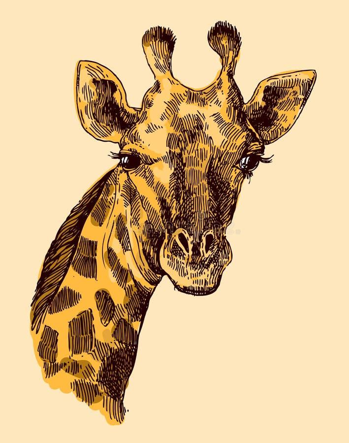 Beautful手拉的例证画象og长颈鹿 库存例证