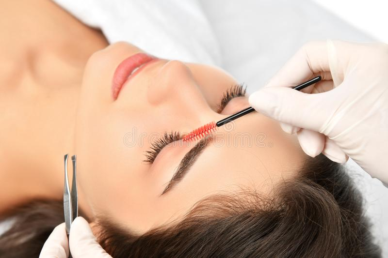 Beautician doing permanent eyebrows makeup. Closeup composition of beautiful woman face with thick brows In beauty salon stock photo