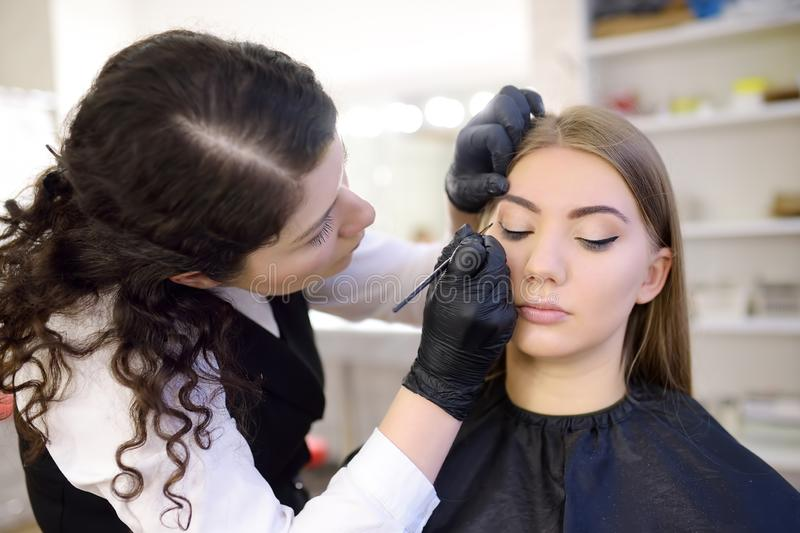 Beautician painting eye cilia by brush. Attractive woman getting facial care and makeup at beauty salon. Architecture eyebrows. Beautician painting eye cilia by stock image