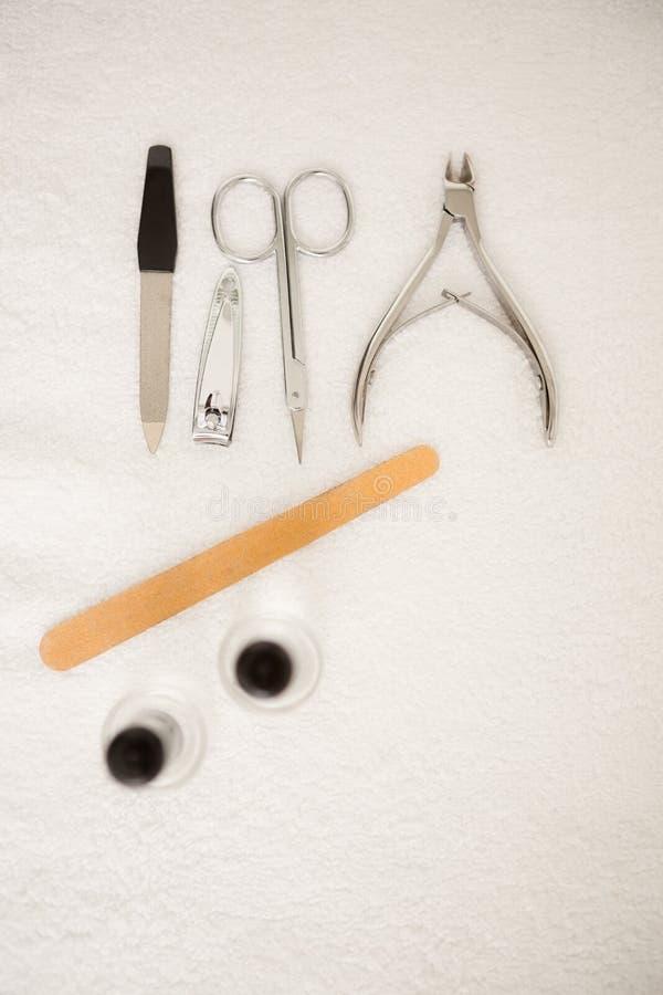 Beautician segregowania klientów żeńscy gwoździe przy zdroju piękna salonem zdjęcia stock