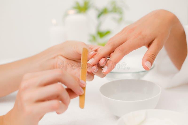 Beautician segregowania klientów żeńscy gwoździe przy zdroju piękna salonem fotografia royalty free