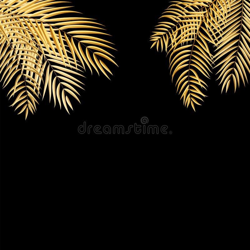 Beautifil金黄棕榈树叶子剪影背景传染媒介Il 库存例证