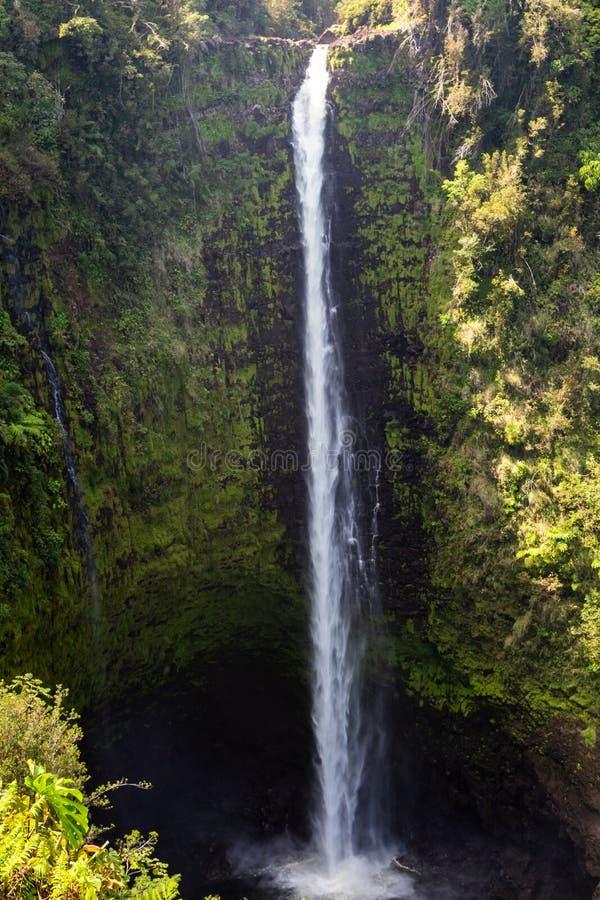 Beautifil Akaka faller nära Hilo arkivfoto