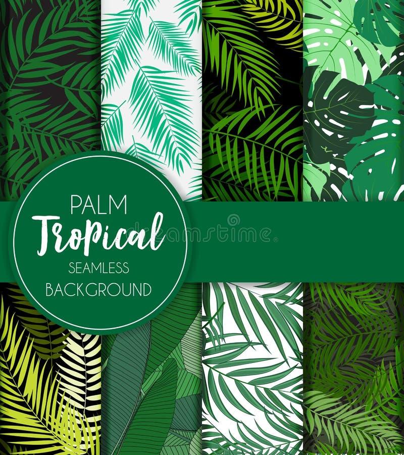 Beautifil-Palme-Blatt-Schattenbild-nahtlose Muster-Hintergrund-Sammlungs-gesetzte Vektor-Illustration lizenzfreie abbildung