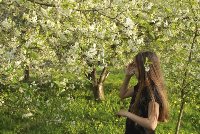 Beautifu flicka, i att blomstra den blommiga vårträdgården royaltyfri fotografi