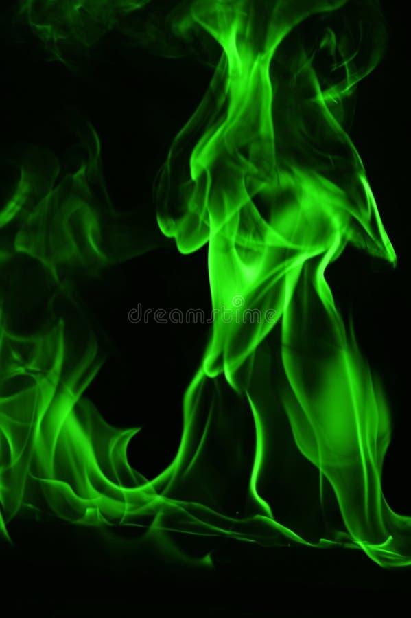 Beautifu gräsplanbrand flammar på en svart bakgrund royaltyfria foton