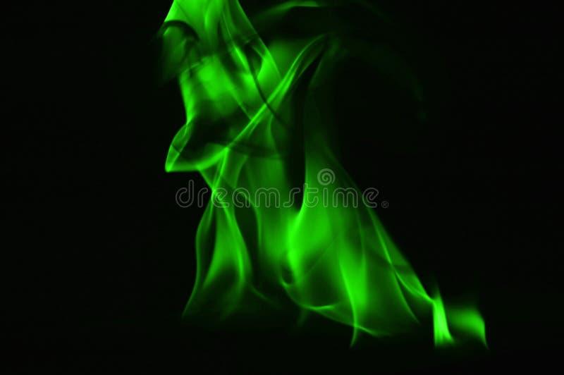 Beautifu gräsplanbrand flammar på en svart bakgrund royaltyfri foto