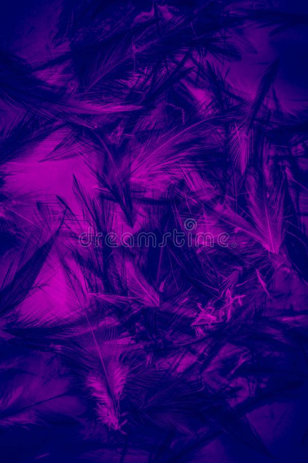Beautiful abstract colorful white purple and green blue light feathers wall pattern textures background and wallpaper art. Beautiful abstract colorful yellow royalty free stock photos