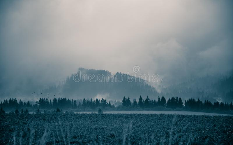 A beautiful, abstract monochrome mountain landscape in blue tonality. Decorative, artistic look in black and white style royalty free stock photo