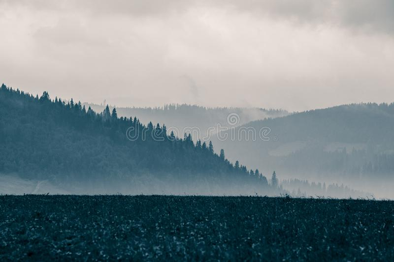 A beautiful, abstract monochrome mountain landscape in blue tonality. Decorative, artistic look in black and white style stock images
