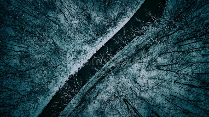 Beautiful aerial overhead shot of a narrow road between trees during winter royalty free stock image