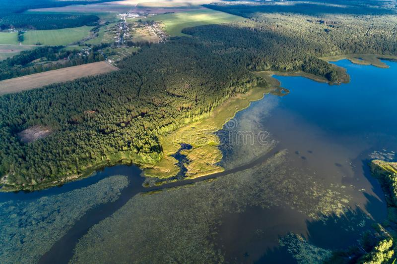 Beautiful aerial shot of a large forest lake. stock image