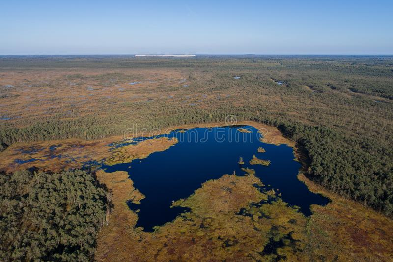 Aerial view of Beautiful lakes in swamp land. Beautiful aerial view of small lakes at swamp area royalty free stock image