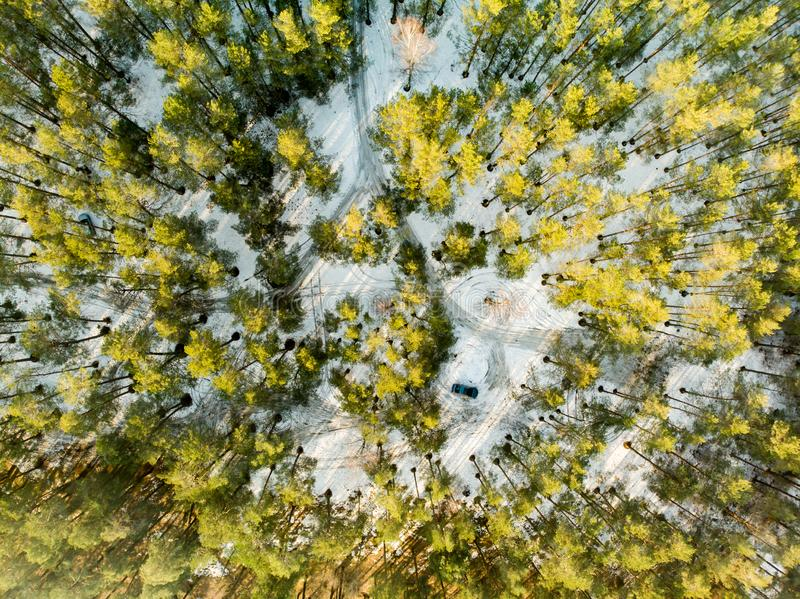 Beautiful aerial view of snow covered pine forests. Scenic winter landscape near Vilnius, Lithuania stock photo