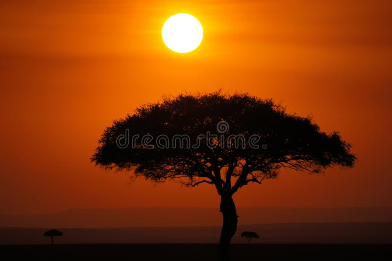 Beautiful African sunset with orange and red sky stock photography